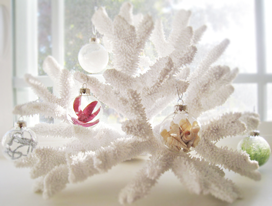 Small Ornaments hanging from white coral