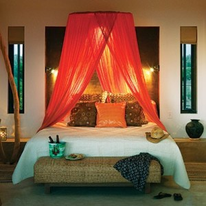 Two to tango tangerine bed canopy