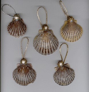 Scallop Sea Shell Angel Ornaments